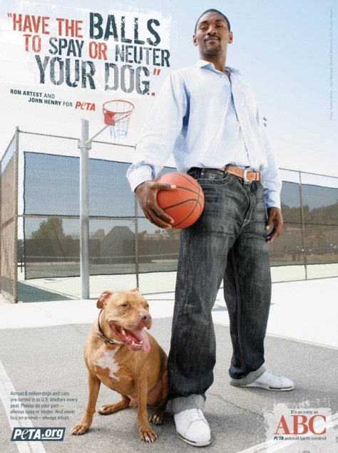 Ron Artest's departure leaves the Houston Rockets... um... neutered.  Photo courtesy of PETA (seriously).